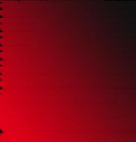 Продюсерский центр NELS