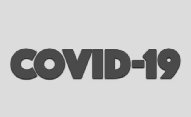Информация по COVID в Бухте Мечты